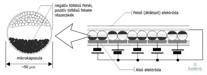 Az elektronikus tinta legfontosabb összetevője a milliónyi apró  mikrokapszula f07886ab72